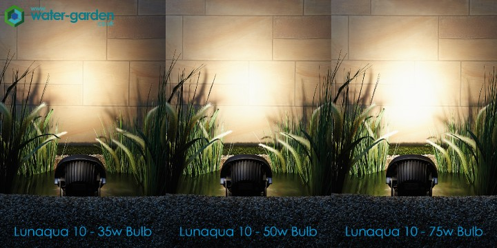 LunAqua10 Bulb Comparison Small