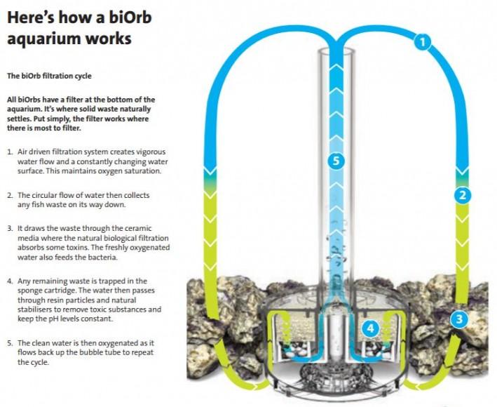 Biorb filtration explanation