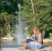Medium Garden Pond
