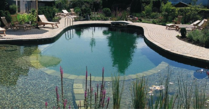 Blog Water Garden Ltd How Much Does A Pond Cost To Build