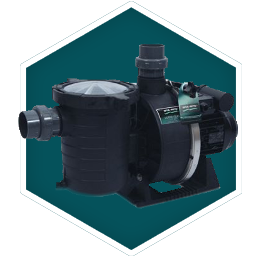 Self Priming Pool Pump
