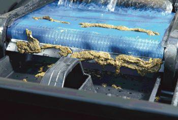 Biotec 36 Screenmatic Pond Filter