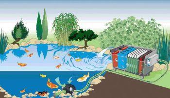Biotec 30 Pond Filter