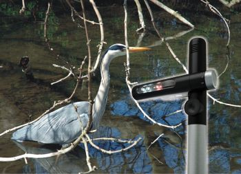 Pond Guard Shuffle - Heron Deterrent
