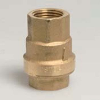 2 inch BSPF Brass Spring Check Valve