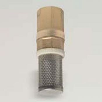 1/2 inch BSPF Footvalve and Strainer