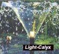 Light-Calyx