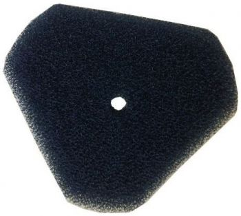 Spare Filter Foam for Swimskim 50 CWS