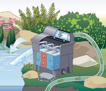 BioSmart 7000 UVC Pond Filter