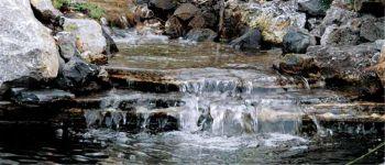 Waterfall Expanding Foam - 12oz Black