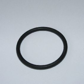 O-Ring NBR 54 x 4 SH40 (BioTec ScreenMatic UV Inlet)